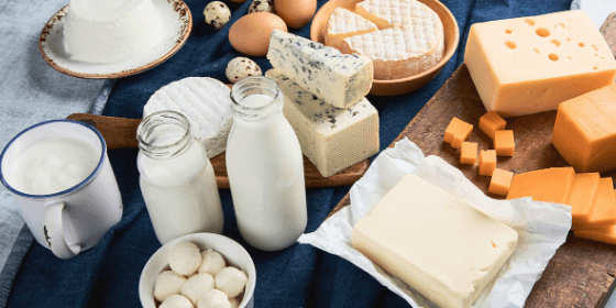 How Dairy Affects Your Immune System